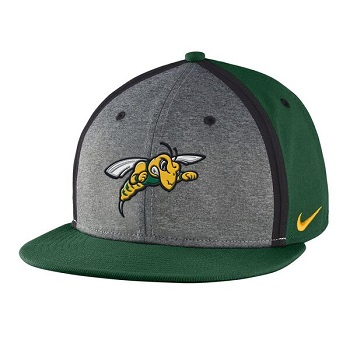 Hat Nike Player's True Sideline (SKU 1059336321)